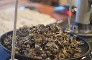Пчелиный подмор от аденомы